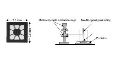 TiNi microactuator and Setup of fatigue test