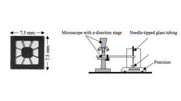 TiNi microactuator and Setup of fatigue test
